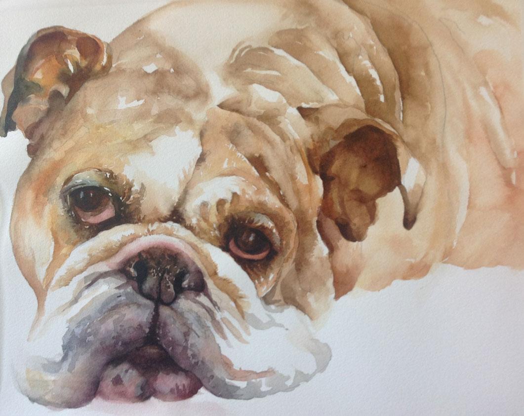 PET Watercolor Class - Arleta Pech Set #5014