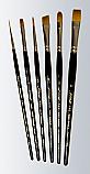 Golden Taklon Beginner's Set
